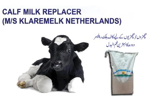 Calf Milk Replacer