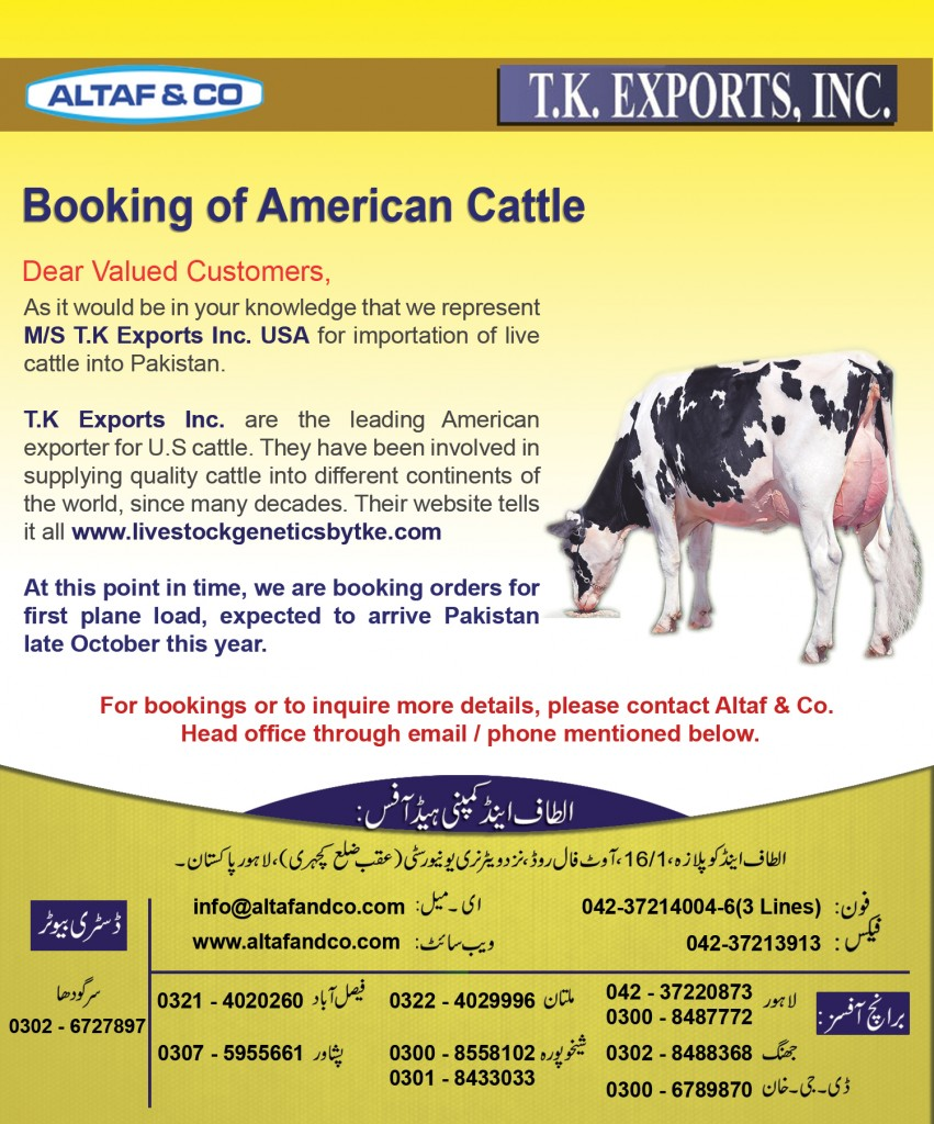 Booking of American Cattle