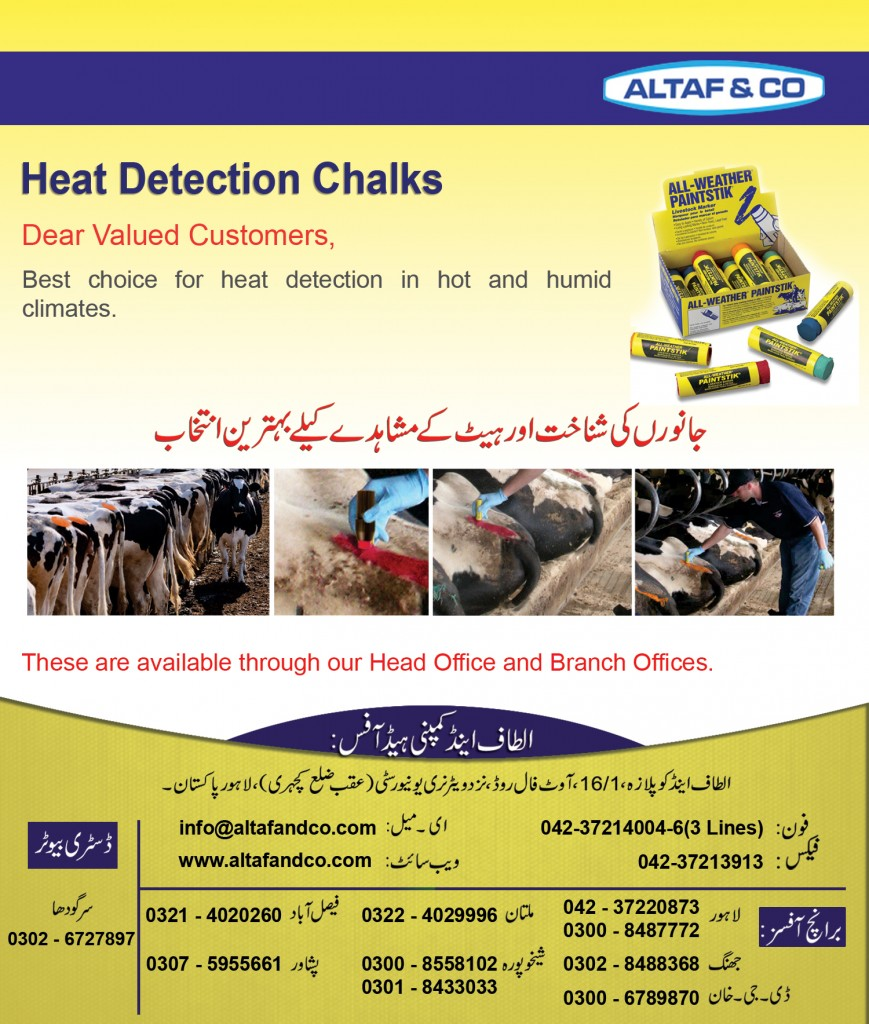 Heat Detection Chalks